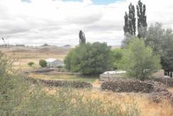 Campo en Maquinchao